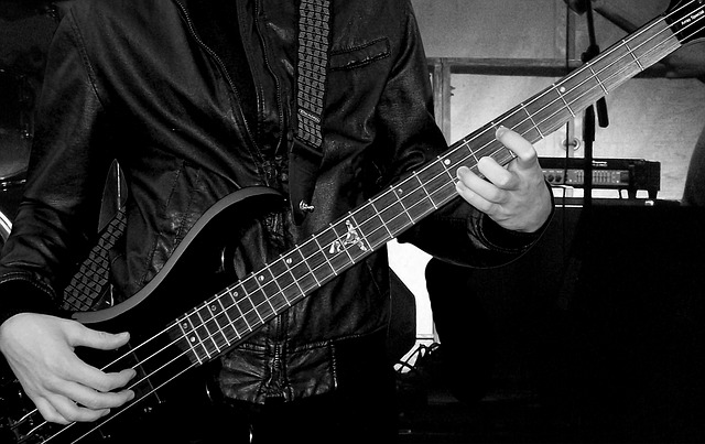 musician-785209_640
